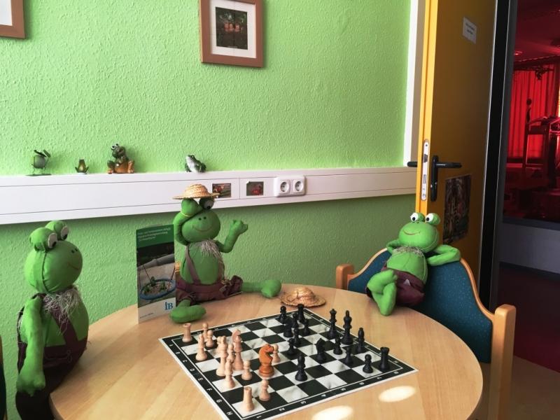 Frosch Schach klein