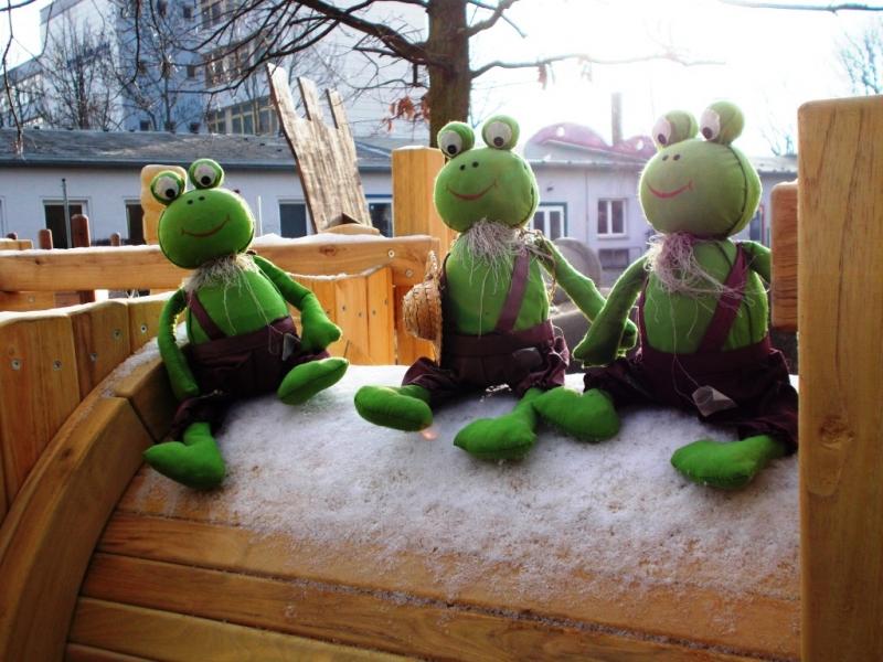 Krippenburg Frosch